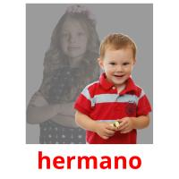 hermano picture flashcards