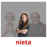 nieta picture flashcards