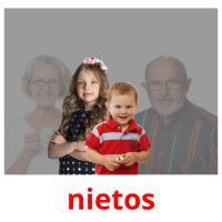 nietos picture flashcards