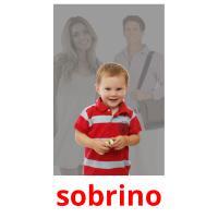 sobrino picture flashcards