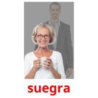 suegra picture flashcards