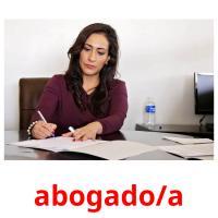 abogado/a picture flashcards