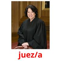 juez/a picture flashcards