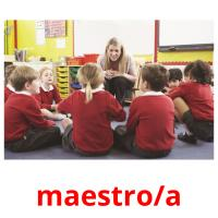 maestro/a picture flashcards