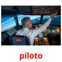 piloto picture flashcards