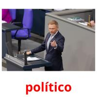 político picture flashcards