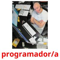 programador/a picture flashcards