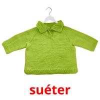 suéter picture flashcards