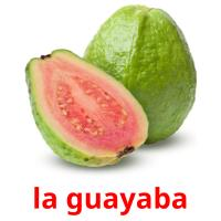 la guayaba picture flashcards