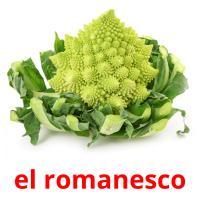 el romanesco picture flashcards