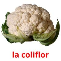 la coliflor picture flashcards
