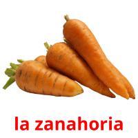 la zanahoria picture flashcards