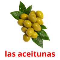 las aceitunas picture flashcards