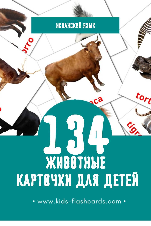 """""""Animales"""" - Визуальный Испанском Словарь для Малышей (134 картинок)"""