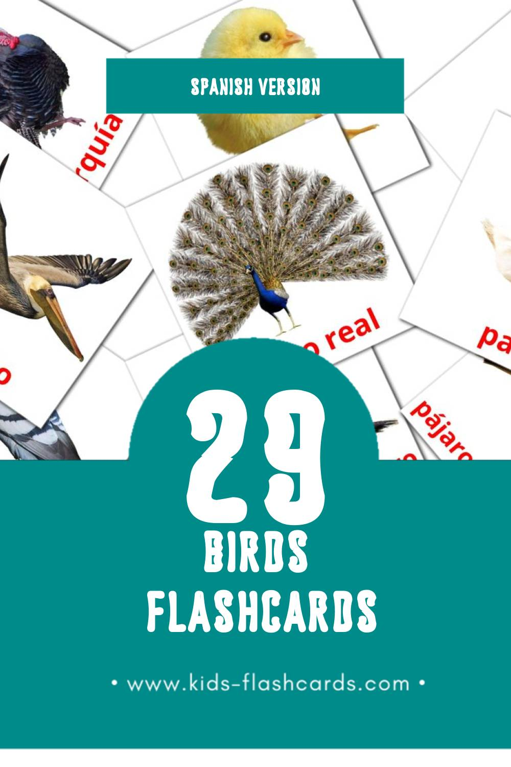 Visual aves Flashcards for Toddlers (28 cards in Spanish)