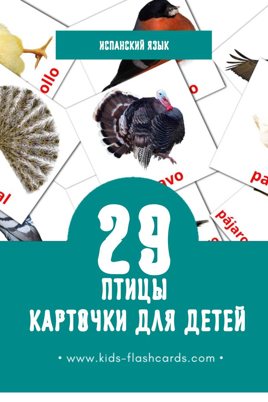 """""""aves"""" - Визуальный Испанском Словарь для Малышей (28 картинок)"""