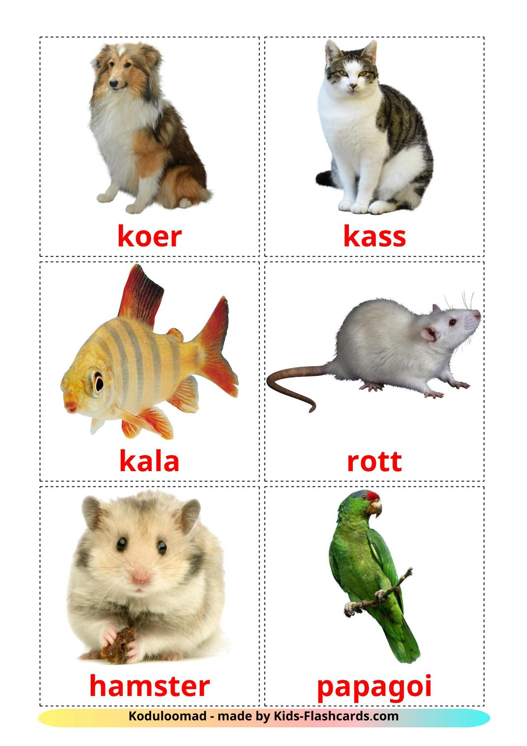 Domestic animals - 10 Free Printable estonian Flashcards