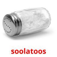 soolatoos picture flashcards