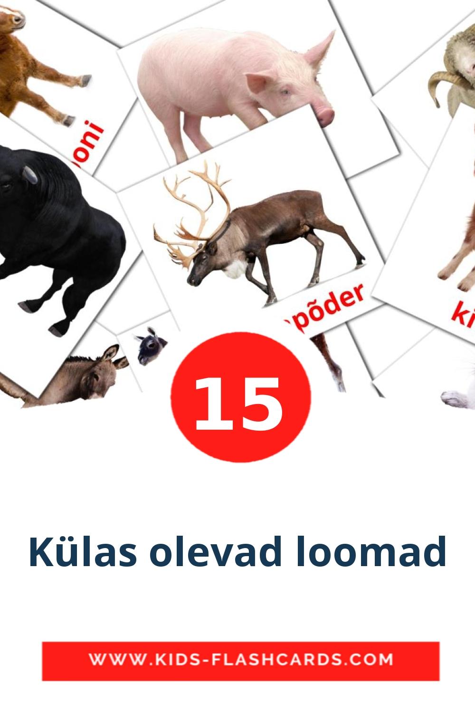 15 Külas olevad loomad Picture Cards for Kindergarden in estonian