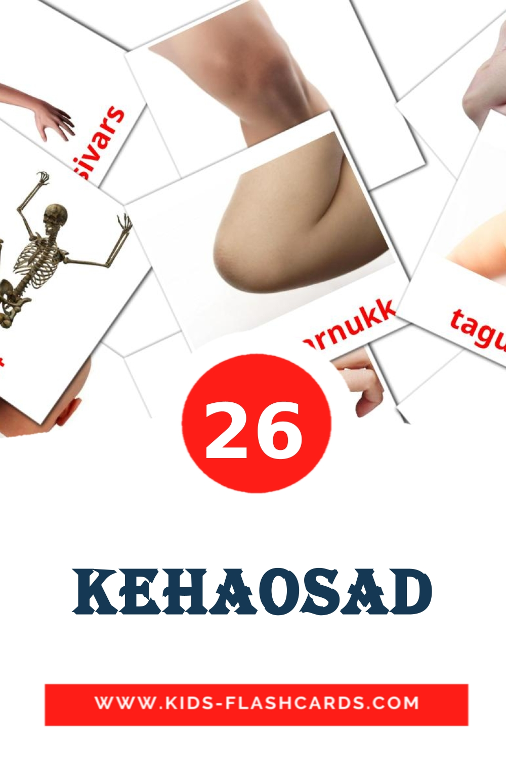 26 Kehaosad Picture Cards for Kindergarden in estonian