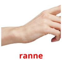 ranne picture flashcards