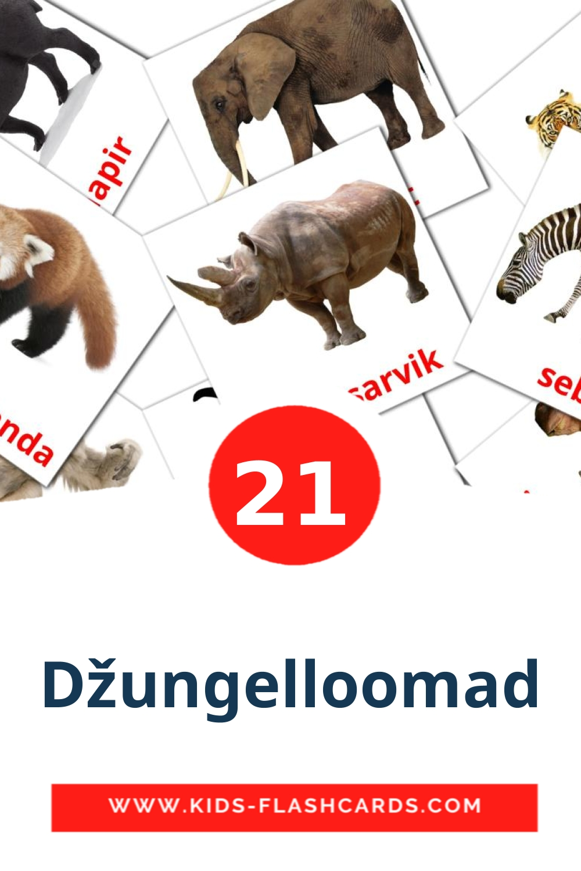 21 Džungelloomad Picture Cards for Kindergarden in estonian