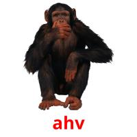 ahv picture flashcards