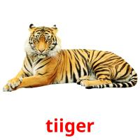 tiiger picture flashcards