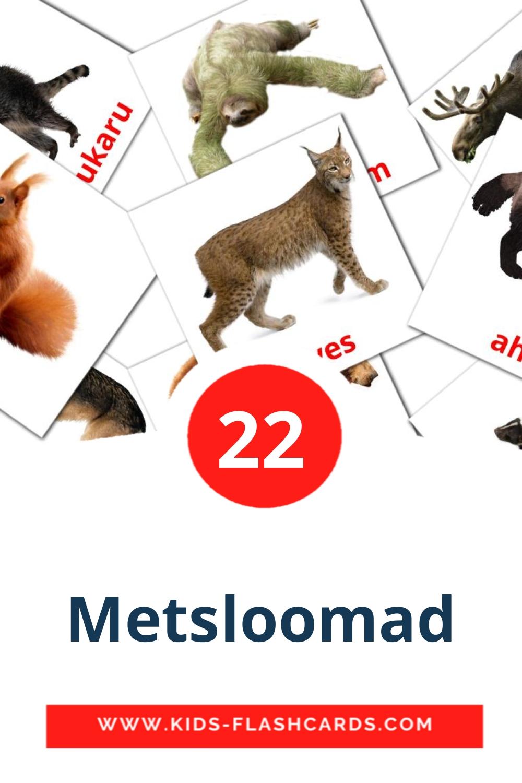 22 Metsloomad Picture Cards for Kindergarden in estonian