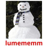 lumememm picture flashcards