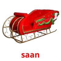saan picture flashcards