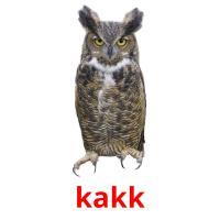 kakk picture flashcards
