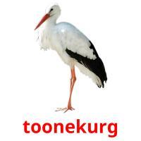 toonekurg picture flashcards