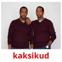 kaksikud picture flashcards