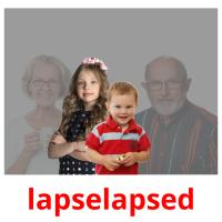 lapselapsed picture flashcards