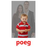 poeg picture flashcards