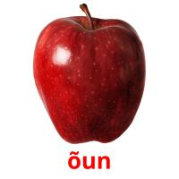õun picture flashcards