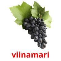 viinamari picture flashcards