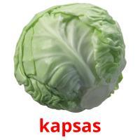 kapsas picture flashcards