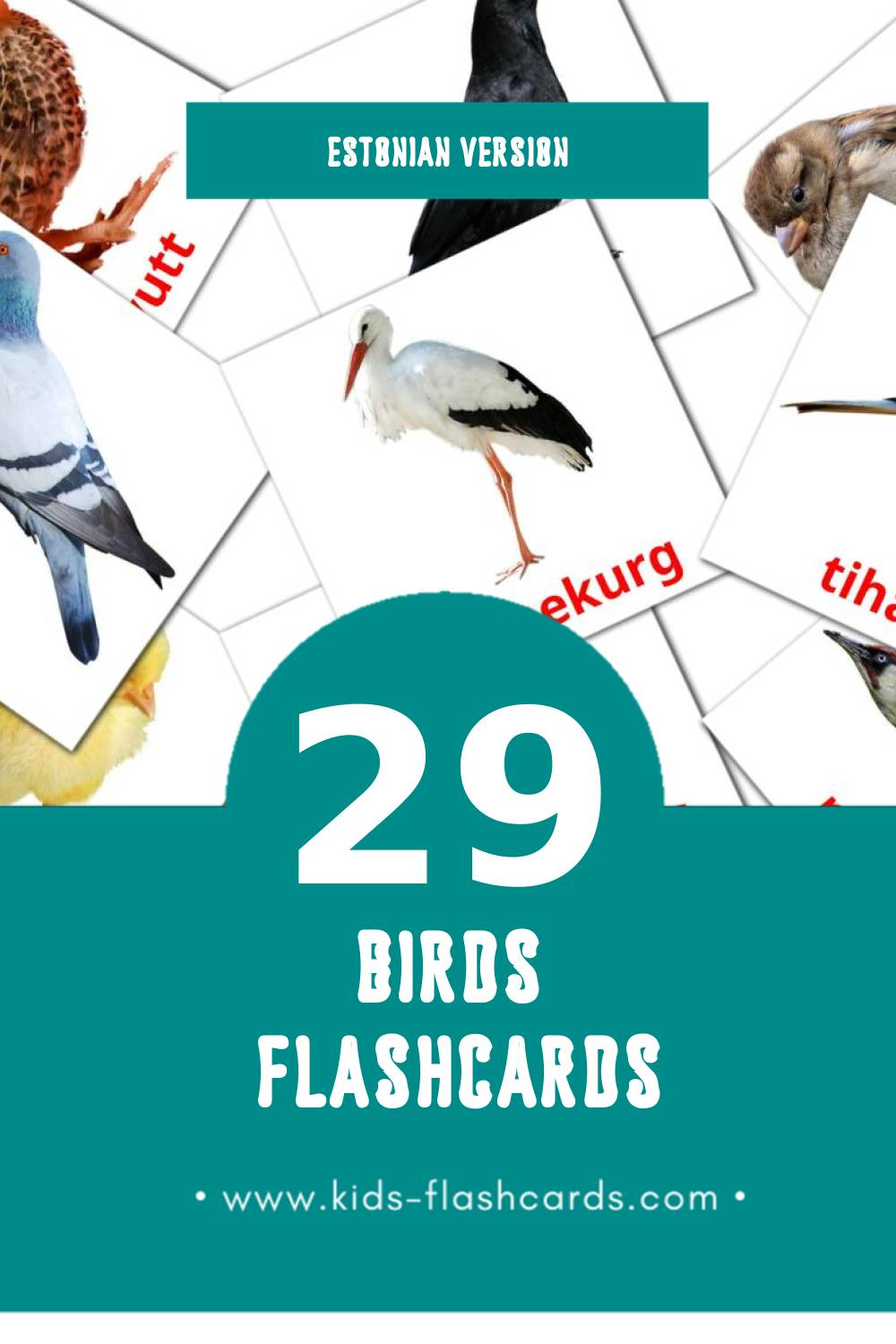 Visual LINNUD Flashcards for Toddlers (29 cards in Estonian)
