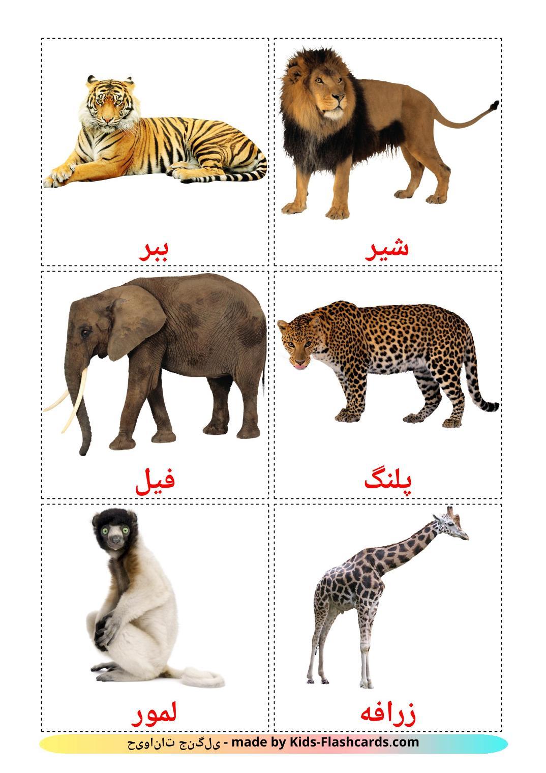 Jungle animals - 21 Free Printable persian Flashcards