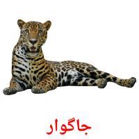 جاگوار picture flashcards