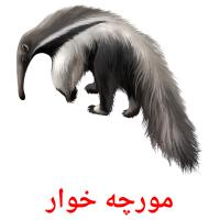 مورچه خوار picture flashcards