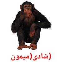 (شادی(میمون picture flashcards