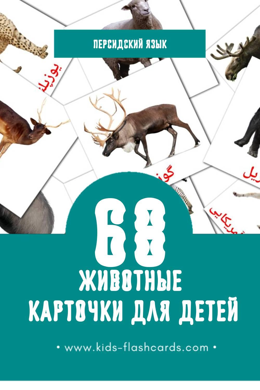 """""""حیوانات"""" - Визуальный Персидском Словарь для Малышей (46 картинок)"""