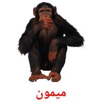 میمون picture flashcards