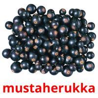 mustaherukka picture flashcards