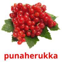punaherukka picture flashcards