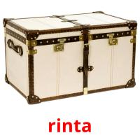 rinta picture flashcards
