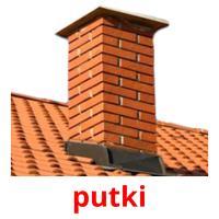 putki picture flashcards